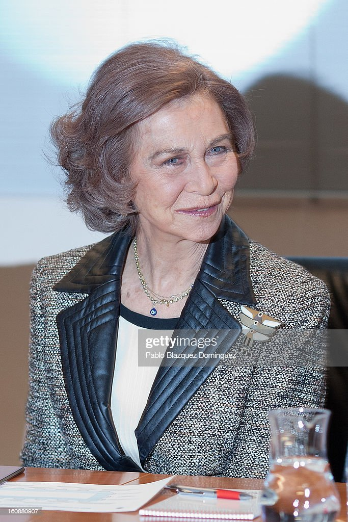 Queen Sofia of Spain visits the National Biotechnology Centre on February 7, 2013 in Madrid, Spain.