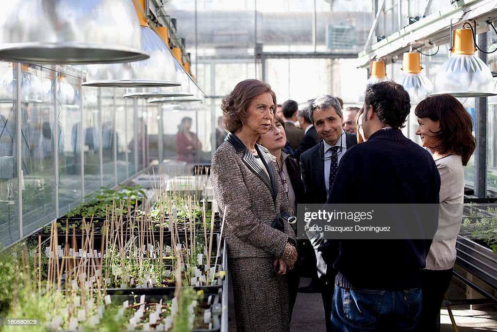 <a gi-track='captionPersonalityLinkClicked' href=/galleries/search?phrase=Queen+Sofia+of+Spain&family=editorial&specificpeople=160333 ng-click='$event.stopPropagation()'>Queen Sofia of Spain</a> (L) visits the National Biotechnology Centre on February 7, 2013 in Madrid, Spain.