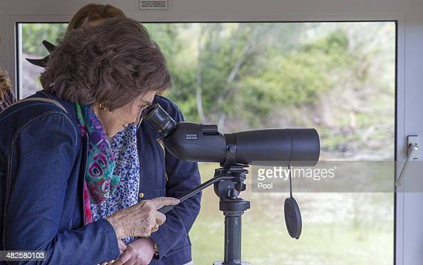 Queen Sofia of Spain watches wildlife through a telescope during her visit to learn about the Donana Biological Station's research projects at the...