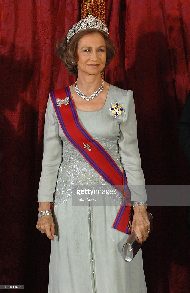 HM Queen Sofia poses for photographers during the Gala Dinner in honour of Romanian President Traian Basescu and his wife Maria, at the Royal Palace on November 26, 2007 in Madrid, Spain