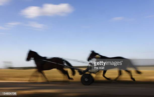 Queensland harness racing trainer/driver Natalie Rasmussen exercising her dual inter dominion winning pacer Blacks a Fake and his mate Simon at the...