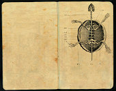 """""""Sketch pad ornate with a turtle skeleton illustration from a 1874 spanish book. Scan by Juan Mora, no copyrights allowed.More like this in my portfolio!"""""""