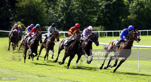 Qui Moi ridden by Dane O'Neill goes on to win the Bet Euro 2008 Betdaq Maiden Fillies' Stakes at Lingfield Racecourse