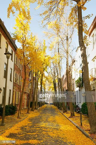 Quiet Philadelphia residential street with autumn foliage