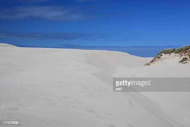 Raabjerg Mile migrating sand dune, Skagen - Denmark