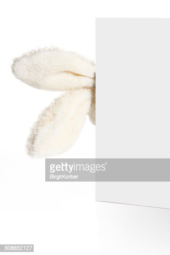 Rabbit ears look out from behind a white paper : Stock Photo