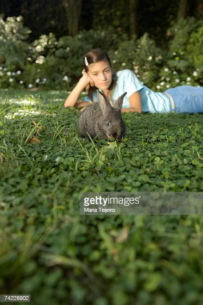 Rabbit feeding on grass, girl (10-11) lying down in background