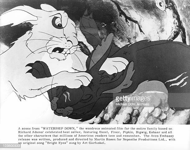 Rabbit fights another in a scene from the film 'Watership Down' 1978