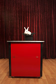 Rabbit in hat on stage