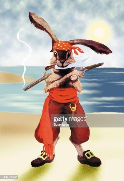 Rabbit Pirate