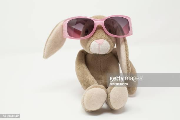 Rabbit with sunglass