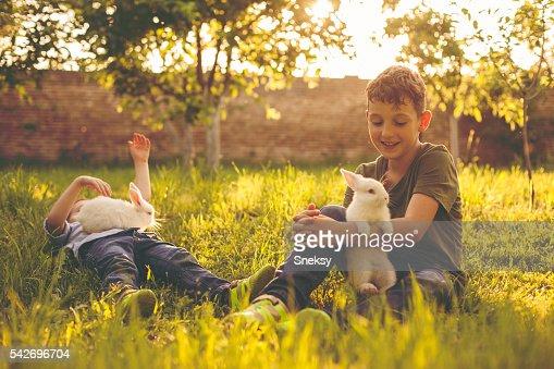 Rabbits and cute boys : Stock Photo