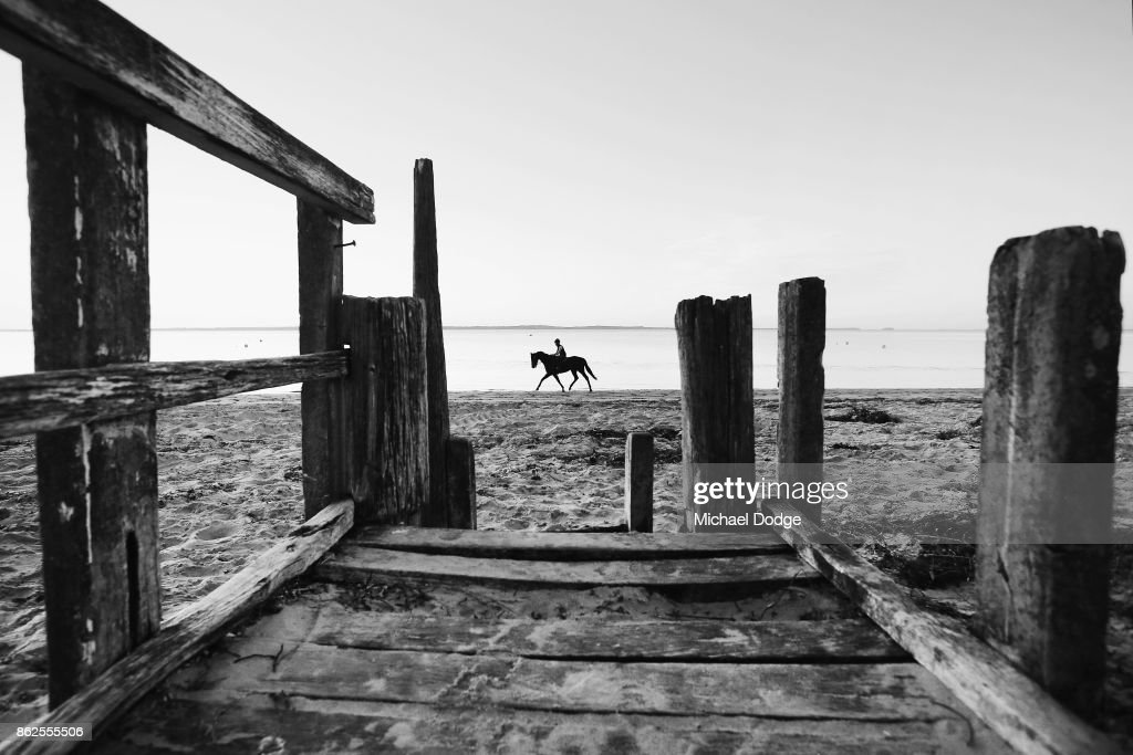 Horse Training On Balnarring Beach