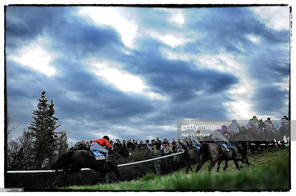Racegoers look on as a runner takes the water jump in The Glenfarclas Handicap Steeple Chase during St Patrick's Thursday at Cheltenham racecourse on March 14, 2013 in Cheltenham, England.