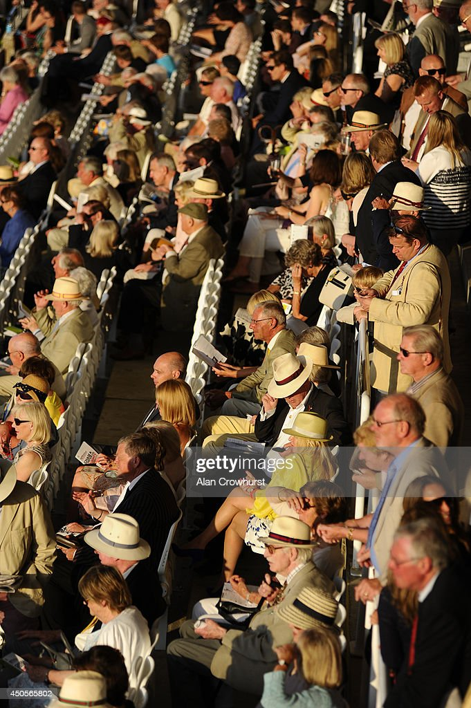 Racegoers sit in the evening sun at Goodwood racecourse on June 13, 2014 in Chichester, England.