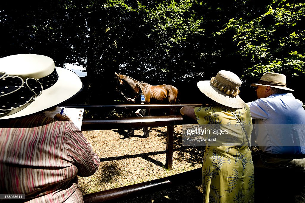 Racegoers watch a horse in the pre parade ring at Newmarket racecourse on July 11, 2013 in Newmarket, England.