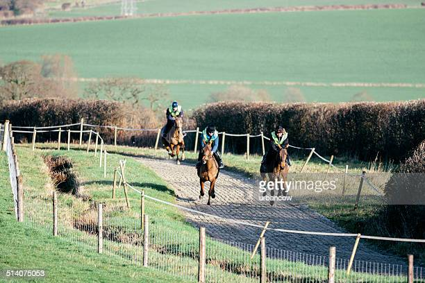 Racehorses, exercise track
