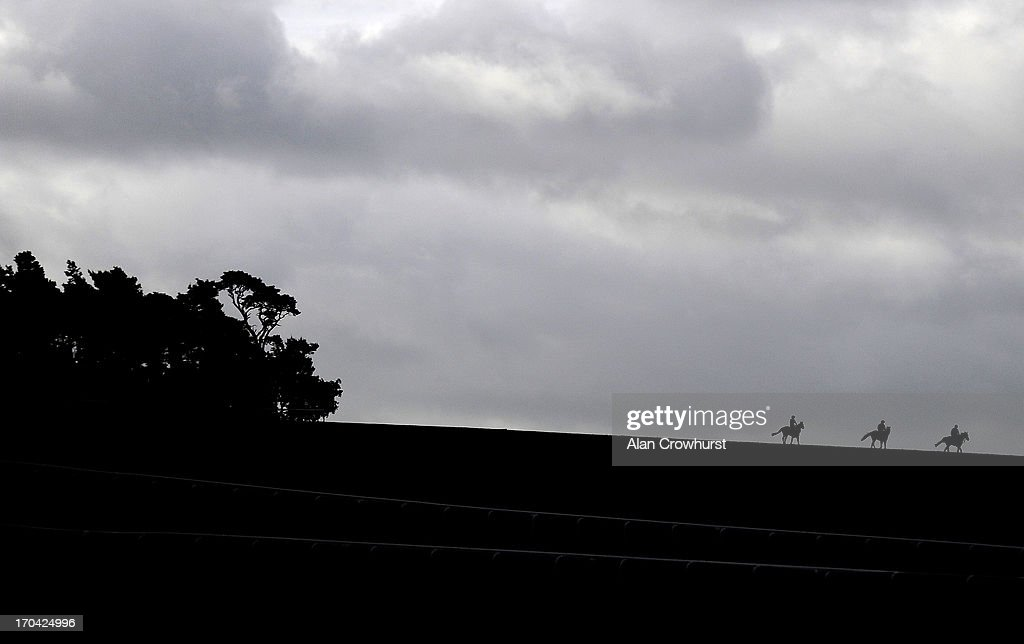 Racehorses make their way down Warren Hill after working on the gallops on June 13, 2013 in Newmarket, England.