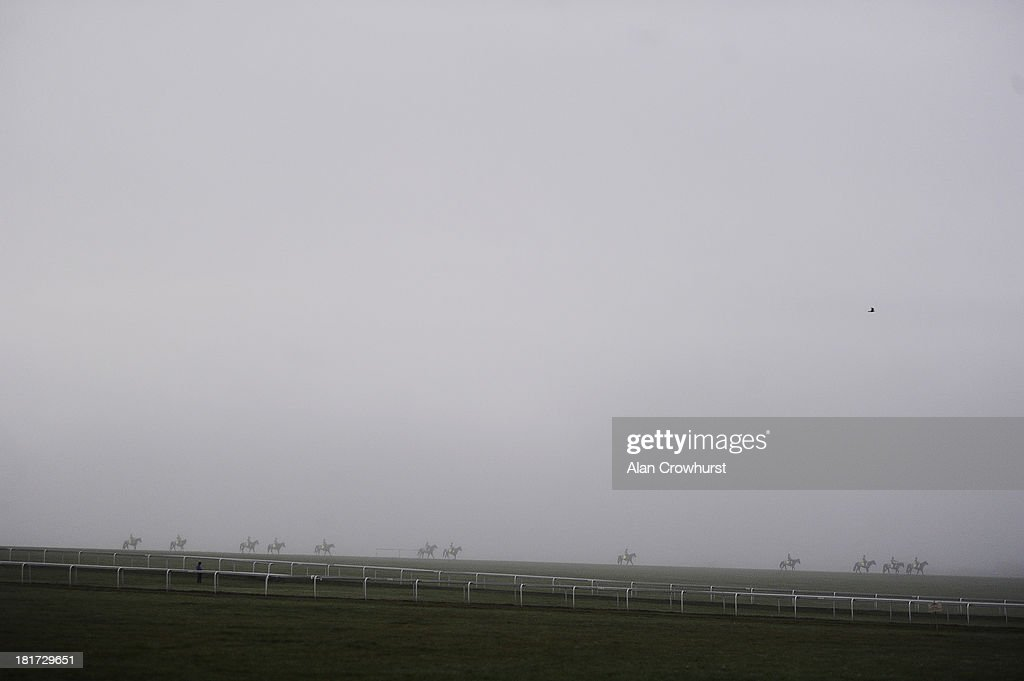 Racehorses make their way down Warren Hill gallops after working on a misty morning on September 24, 2013 in Newmarket, England.
