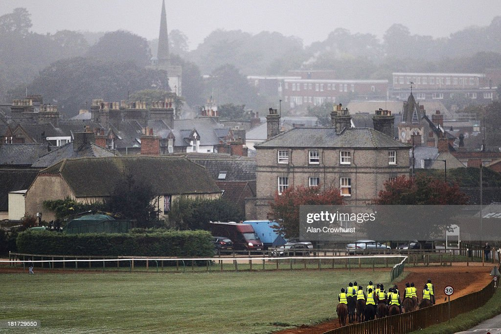 Racehorses make their way down Warren Hill gallops after working on September 24, 2013 in Newmarket, England.