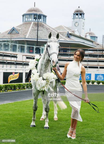Rachael Finch poses alongside a horse at the launch the 2014 Sydney Spring Carnival at Royal Randwick Racecourse on September 2 2014 in Sydney...