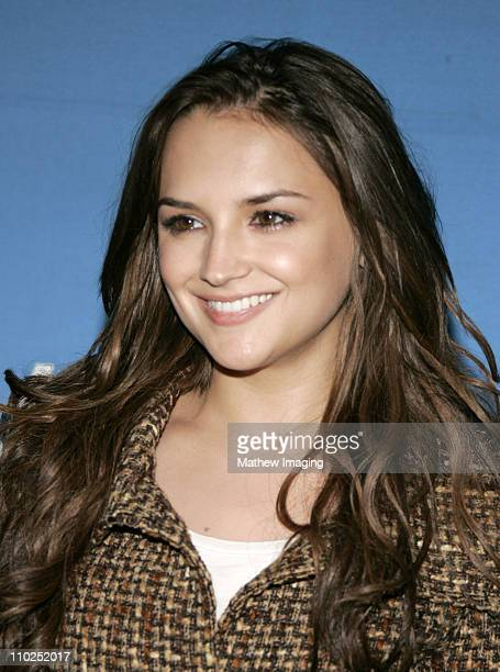 Rachael Leigh Cook during A Night at the Copa at the Hollywood Bowl Featuring Pink Martini and Bebel Gilberto at Hollywood Bowl in Los Angeles...