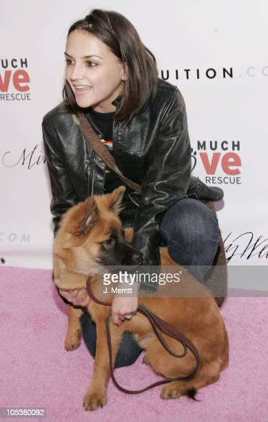 Rachael Leigh Cook during Annual Us Weekly Hollywood Holiday Shopping Party at Smasbox Studios in Culver City California United States