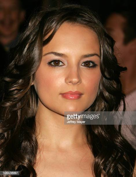 Rachael Leigh Cook during 'Into The West' West Coast Premiere Arrivals at Directors Guild Theater in Los Angeles California United States