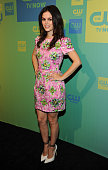 Rachel Bilson attends The CW Network's 2014 Upfront at The London Hotel on May 15 2014 in New York City