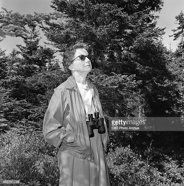 rachel carson and silent spring pdf