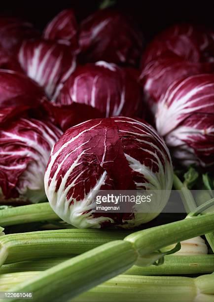 Radicchio and Celery