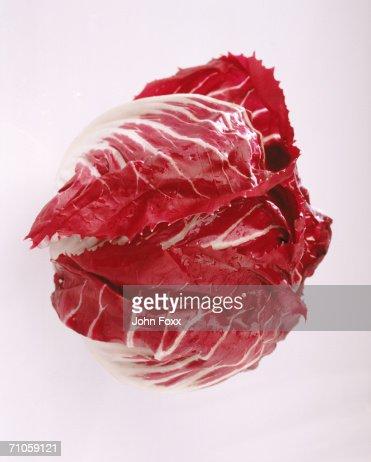 Radicchio leaf against white background, close-up