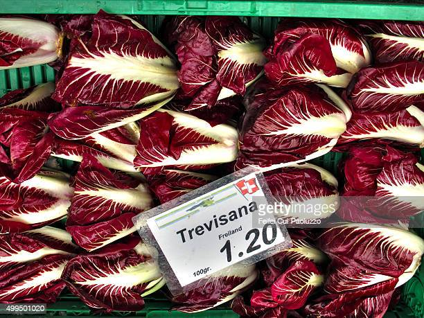 Radicchio Vegetable market at Bern Switzerland