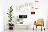 Radio on white cupboard between ficus tree and wooden armchair against white wall with gallery in retro living room