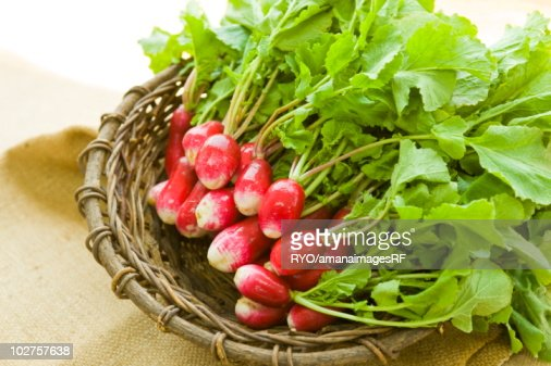 Radish in a basket : Stock Photo