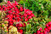 Fresh produce to include radishes and mint at a local outdoor market