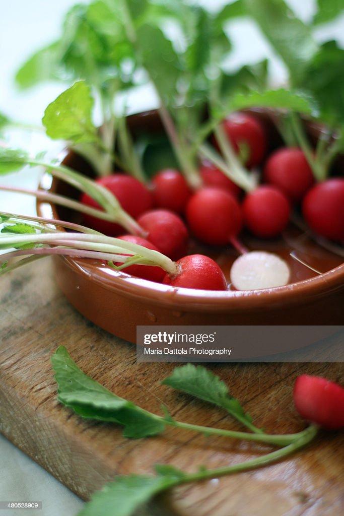 Radishes : Stock Photo