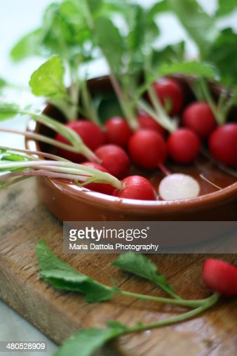 Radishes : Stock Photo