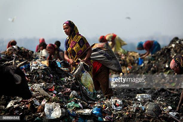 NEW DELHI INDIA –– Rag pickers as they are called scavenge for food and recyclable materials inside Delhis 70–acre 100–foot high Ghazipur landfill A...