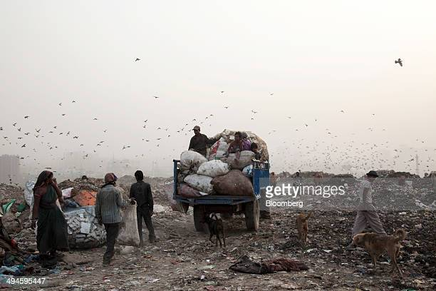 Rag pickers sort through garbage as a tractor with a trailer laden with sorted garbage leaves the Ghazipur landfill site in the east of New Delhi...