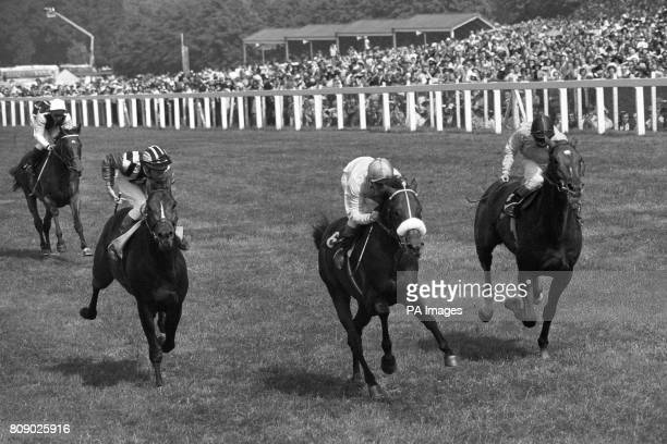 Ragstone ridden by Ron Hutchinson wins the Ascot Gold Cup with Proverb Willie Carson up second and Lassalle Lester Piggott up third