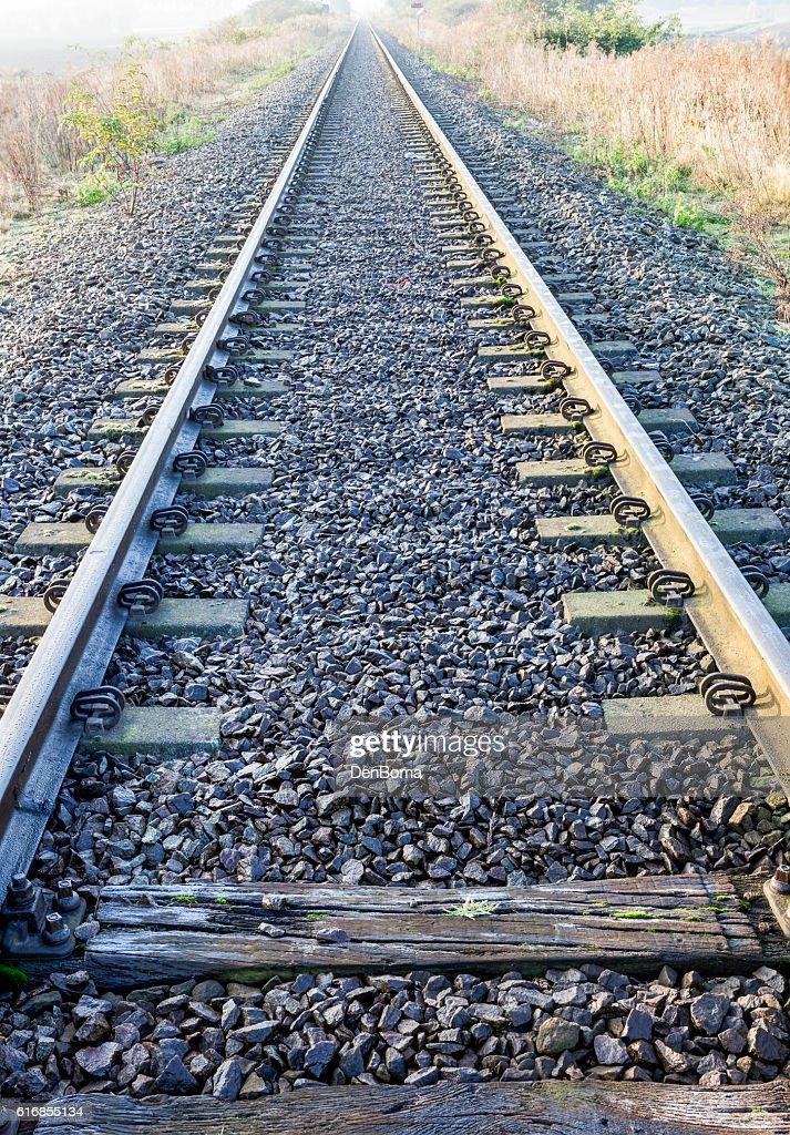 Railway along the field : Stock Photo