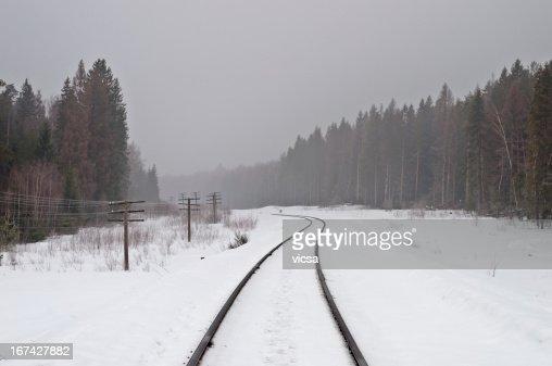 Ferrovia nella foresta nebbiosa : Foto stock