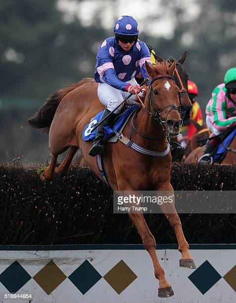 Railway Storm ridden by Bryony Frost jumps the last to win the Higos Insurance Services Exeter Novices Handicap Chase at Exeter Racecourse on March...