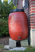 Rain barrel for rainwater harvesting