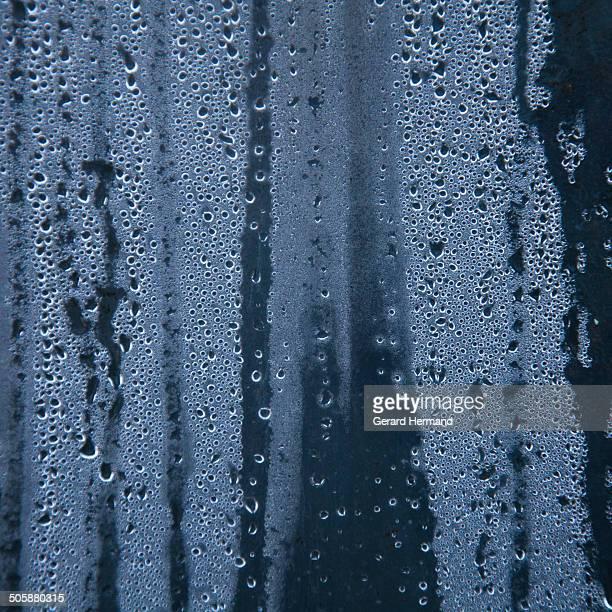Rain drops on a pane