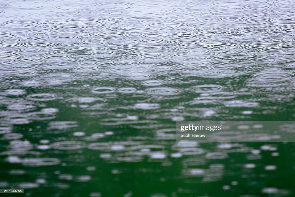 Rain falling on water : Foto stock