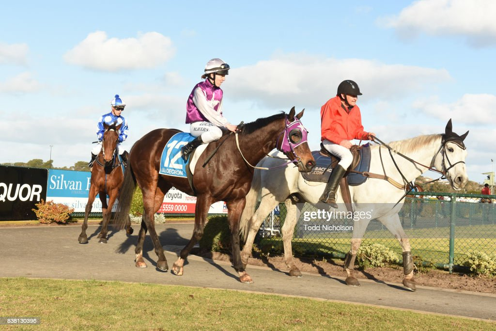 Rain Fast ridden by Melissa Julius returns after the Darrian Office & Art Supplies BM64 Handicap at Warrnambool Racecourse on August 24, 2017 in Warrnambool, Australia.