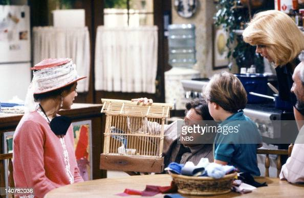TIES 'Rain Forests Keep Fallin' on My Head' Episode 21 Pictured Justine Bateman as Mallory Keaton Michael J Fox as Alex P Keaton Brian Bonsall as...