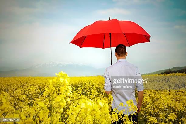 Pioggia è disponibile